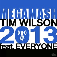 60+ Pop Tunes – Mega Mashup 2013 (Part II) – By Tim Wilson