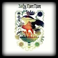 Birdy nam nam Bootleg/Dub Remix – by djexecutive