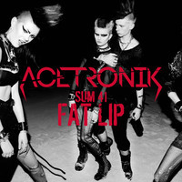 Sum 41 – Fat Lip (Acetronik Remix)