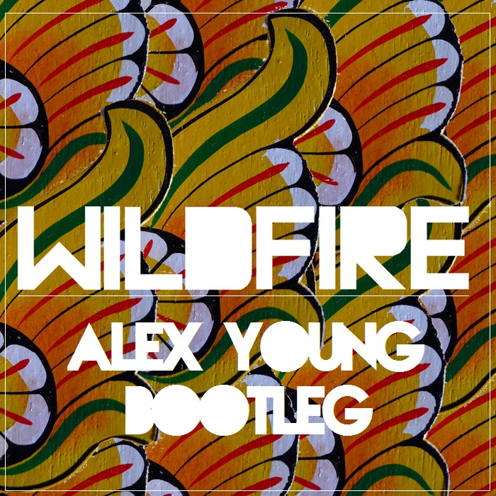 SBTRKT – Wildfire (Alex Young Bootleg)