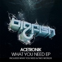 What you need EP – Acetronik