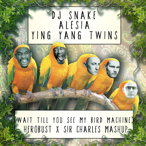 heRobust X Sir Charles – Wait Till You See My Bird Machine