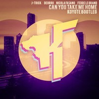 Can You Take Me Home (Bootleg) – By Koyote