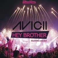 Hey Brother (Maglux & Evico vs Avicii Mashup) – By MashMike