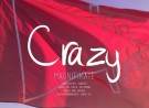 Magnifikate - Crazy (Felxprod Remix)