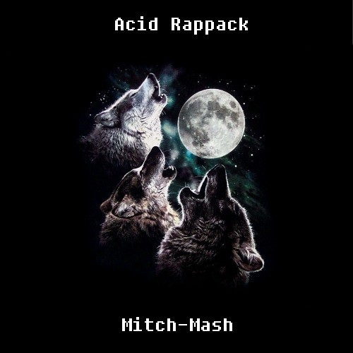 Acid Rappack (Mashtival Edit) – By Mitch-Mash