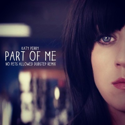 Part of Me (Katy Perry Dubstep Remix) – By No Pets Allowed