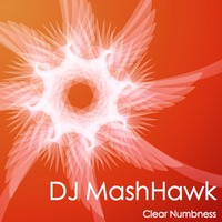 Clear Numbness (Zedd vs Tiesto vs Usher vs Katy Perry vs Akon) – By DJ MashHawk