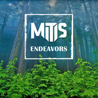 Endeavors – By MitiS