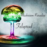 Mushroom Paradise – Felxprod (Original Mix)