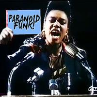 Robin Skouteris – Paranoid Funk! (Snap! / Garbage / White Town / Milli Vanilli)