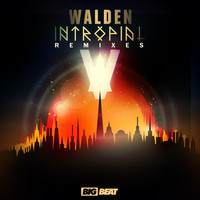 Walden – Intropial (Pierce Fulton Remix)