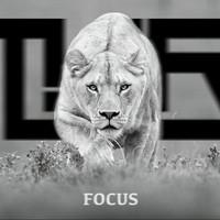 Focus (Original Mix)  – By TYR