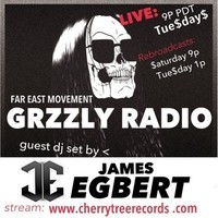 James Egbert Guest Mix (49 Minute) – Far East Movement (GRZZLY Radio)