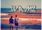 Cheat Codes Demi Lovato - No Promises ( Remix ) - By WAMZ
